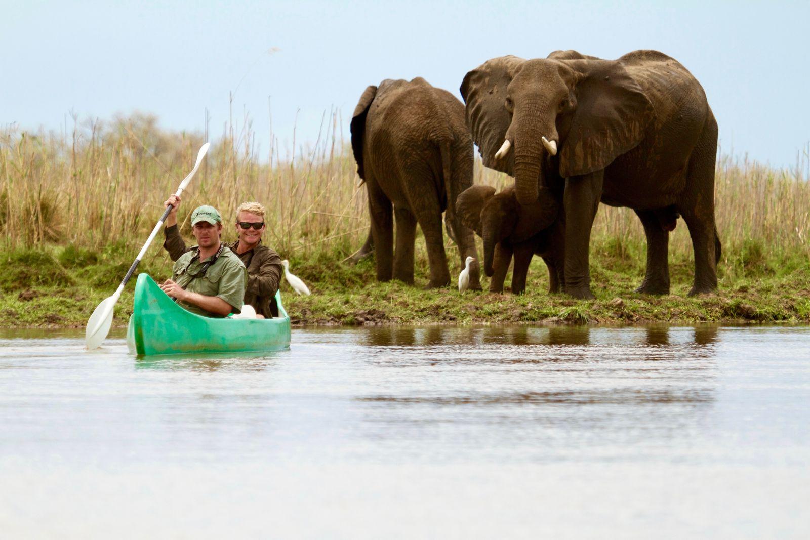 Kano safari met Tusk & Mane op Zambezi rivier Zambia