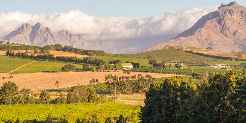 Stellenbosch in Kaapse Wijnlanden Zuid-Afrika