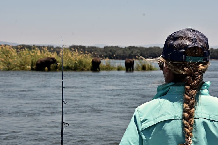 Wild spotten op de oever van de Zambezi rivier in Zimbabwe