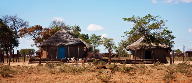 Dorpje in Omaheke provincie Namibië