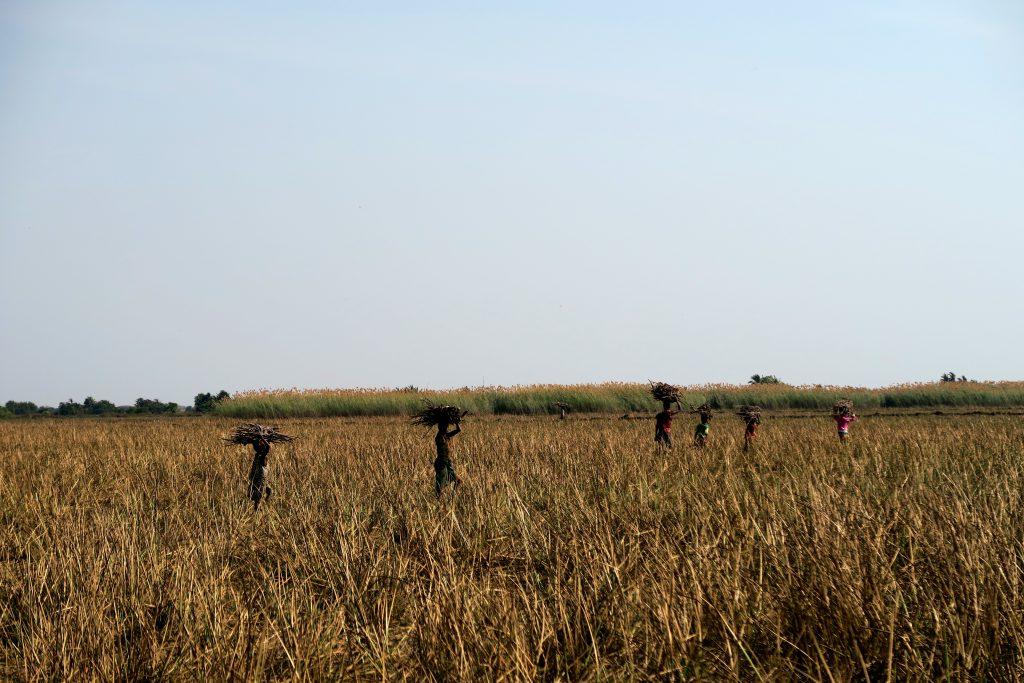 Locals in Bangweulu Swamps, Zambia