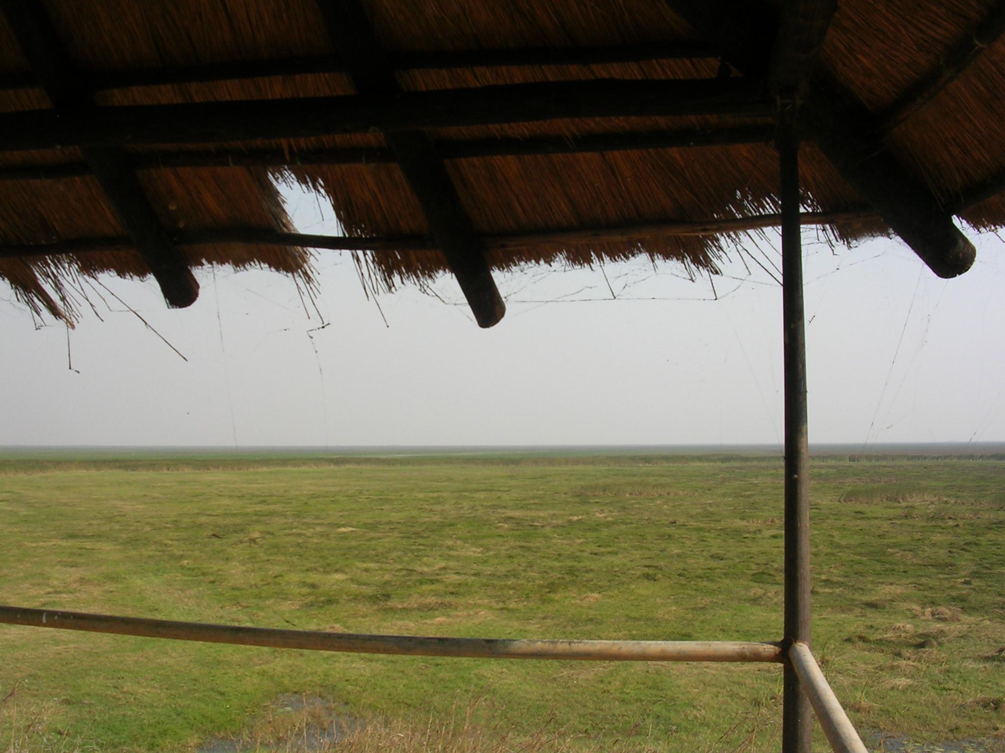View from veranda in Lochinvar National Park Zambia