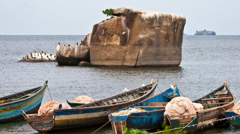 Bootjes langs Lake Victoria Uganda