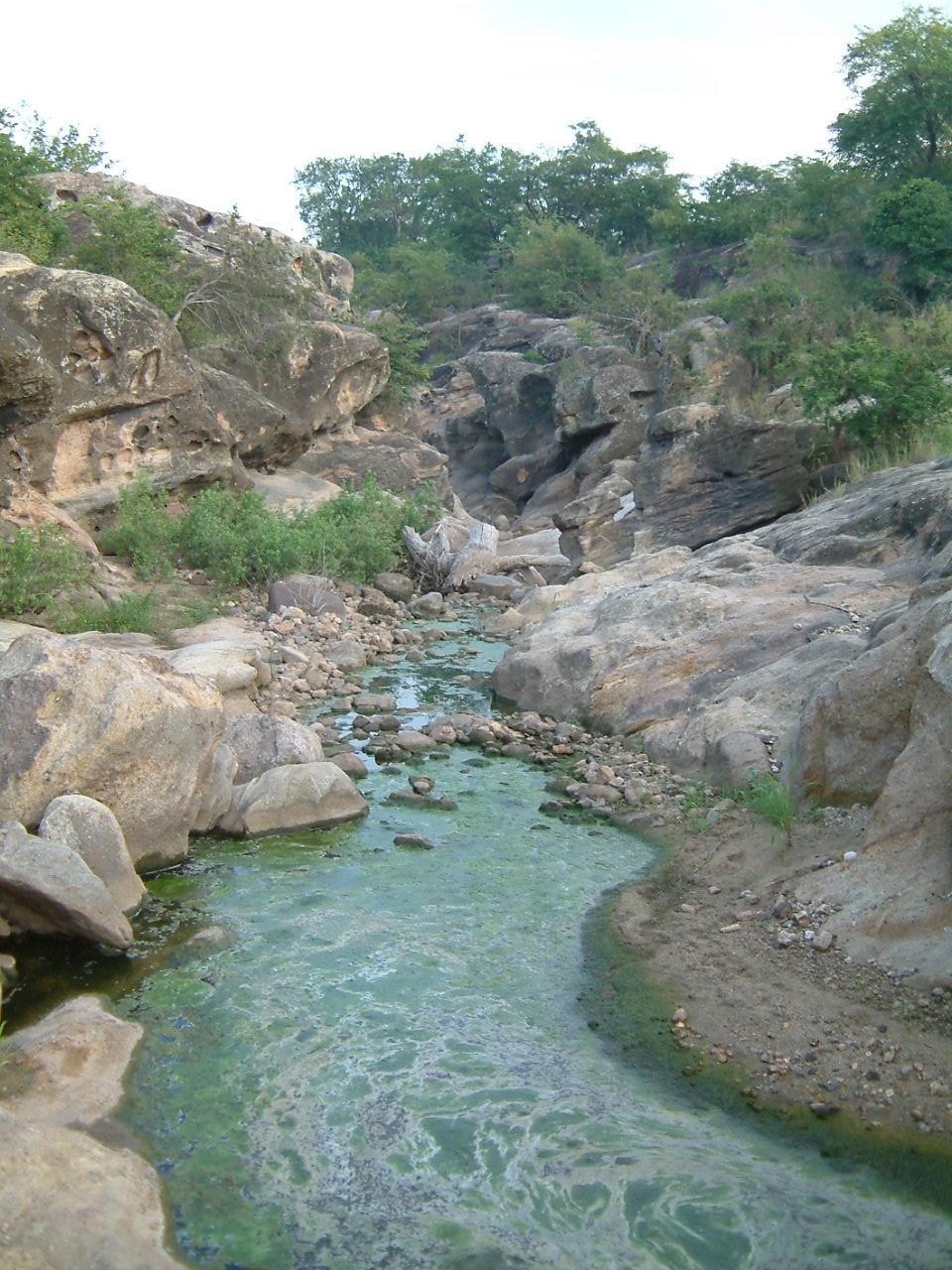 Mwabvi rivier in Mwabvi Wildlife Reserve Malawi